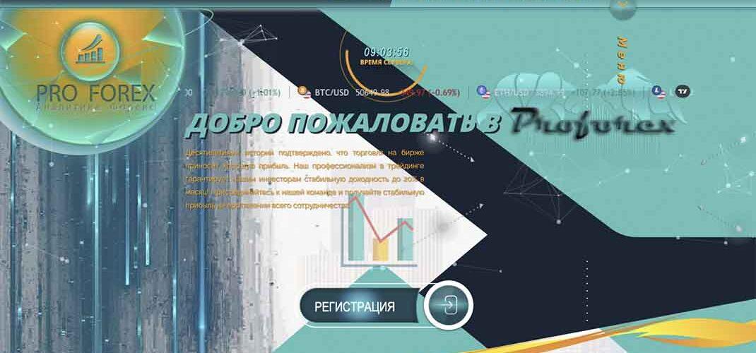 Пирамида ProForex: отзывы и условия инвестирования – Мошенник?